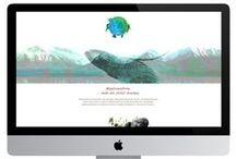Website Design / Programmierung und Gestaltung von Webseiten