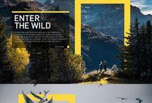 Design - Gestaltung Web