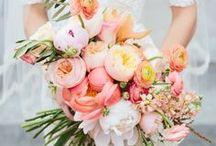 Coral Wedding Colour Palette / Make a statement of femininity. Coral wedding colour scheme