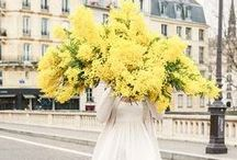 Yellow Wedding Colour Palette / Yellow wedding colour scheme