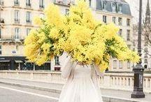 Yellow Wedding Colour Palette / Yellow wedding colour scheme