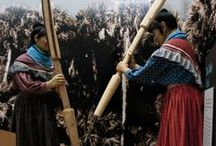 Ah-Tah-Thi-Ki Seminole NA Museum - Big Cypress / A Place to learn, a place to remember!