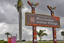 Miccosukee(misc)