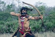 Swamp Owl / ...A Hero with a Seminole Soul...