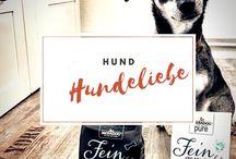 HUNDE / Hundeblog - Die spannende #HundeKolumne auf bluetenschimmern.com | Alles zum Thema Hundeliebe, Fitness mit Hunden und alle Ärgernisse und Freuden rund um den Hund.