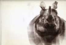 shek, andrew / elephantart.blogspot.com