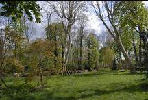 Nature / #Faune #Flore #Vert #Paysage
