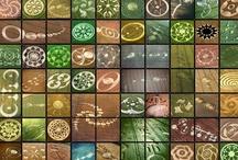 EXTREME Crop Circles
