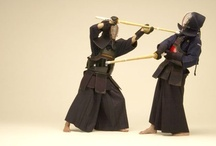 Body Dynamic: Kenjutsu