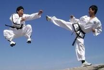 Body Dynamic: Tae Kwon Do