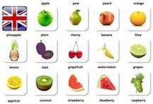 Learning English / English vocabulary for beginners sorted in simple categories