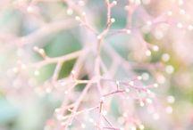 cute litle things~♡