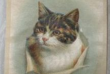 "Cats of Early America / Here are the ""LOLcats"" of early America! Cats have been a popular design choice since way before the internet."