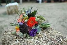 Weddings at Camp / Photos and ideas from ceremonies and receptions at Camp Lutherwood Oregon
