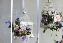 lanterns and birdcages
