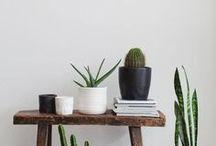 · GREENERY · / · design · ideas · indoor plants ·
