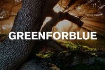 Greenforblue / The average tree has the power to absorb as much as 18 kg of CO2 in a year and Volvo Car South Africa is harnessing this power, with the Greenforblue project.  With every new Volvo, we give you a spekboom tree to plant where you choose.  Consider the environment. Consider Volvo.  Like everything we do at Volvo, Greenforblue is #MADEFORYOU. / by Volvo Car South Africa