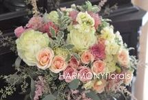 HARMONY Summer Wedding