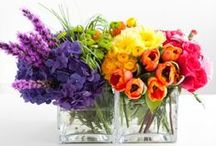 Flowers / Flower arrangements and vases
