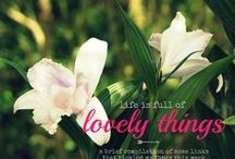 Lovely things and more......