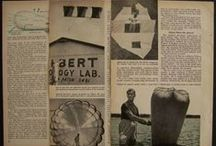 """Domina Jalbert inventor multi-cell wings - ramair """"PARAFOIL"""" source: platox2001, flickr / His name is Domina C. Jalbert and he has made the most radical departure in parachute design since Leonardo da Vinci!"""
