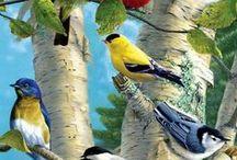 ptaki 1/  birds
