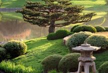 Zen gardens / Places to dream