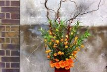 Friday's Floral Fantasy / Our floral designers get to play once a month each and we post their work on the Friday Floral Fantasy spot to give them a little exposure, so let us know which ones you like and which ones you don't x