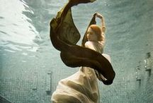 Underwater Photography / by Lyddie Jo