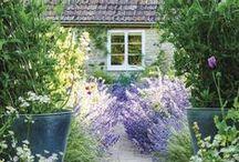 + Garden / garden + greenery