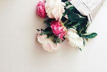 + Flowers / flowers + floral