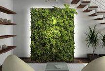 Vertical garden / green wall / Vertical garden / green wall / green design / vegetal wall