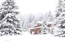 + Winter / winter + snow + christmas + cold days
