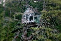 TREE Houses / case sull'albero,un sogno per ogni età!
