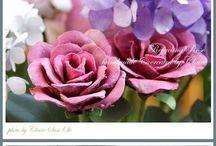 DIY květiny všeho druhu