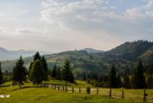 danu.ro / Green landscapes, macros and more