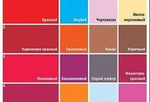 Дизайн_Палитры цвета