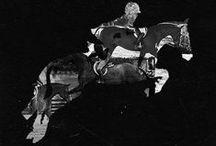 ~Horses♡~