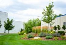Twin Cities Commercial Landscaping Projects / Some examples of our landscape work on commercial properties around the greater Twin Cities area.