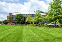 Lawn Care by BLC / Some examples of our work and tips on how to create a beautiful, lush lawn.