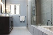 Portfolio: Rolling Meadows Master Bath / Master Bath project we completed in the summer 2013.