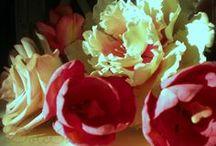 Gum paste flower / Sugar flower