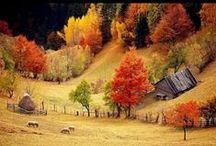 Dor de-acasa... / Romania / by Ionut Aron