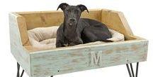 *CAMA PARA CACHORRO (BED FOR DOG) / http://patyshibuya.com.br/category/cama-para-cachorro/