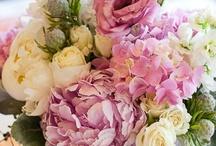 Floral Arrangements / by Yellow Vase