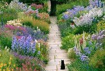 Ideas for Outdoor: garden, patios, landscape planning / Garden, landscape  planning, patio and backyard ideas