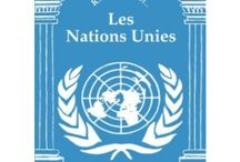 International law & foreign politics