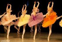 Ballet / by Amber Maurer-Farran