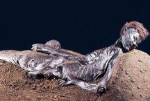 Verdenshistorien set i billeder - alt hvad interesserer mig / Alt fra egyptologi, romerriget, inkariget til kvindefrigørelsen, anden verdenskrig og danske arkæologiske fund