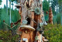 Fairy Gardens / by Carrie Walker Roberts